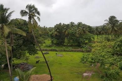 Aquarii Hotels - Goa, Индия, Северный Гоа