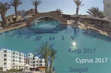 Seagull, Кипр, Протарас